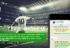 Football-Magazine lands on WhatsApp: the latest news directly on your smartphone